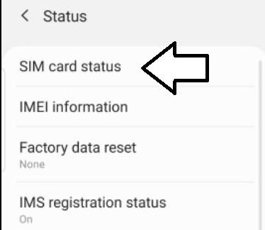 sim-card-status.jpg