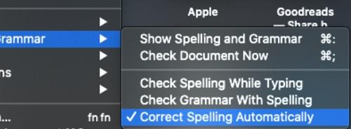 spelling-grammar-options.jpg