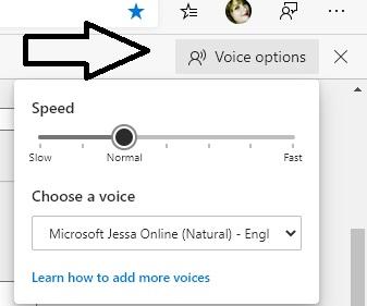 voice-options