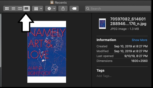 gallery-format