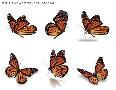 monarch-inspiration