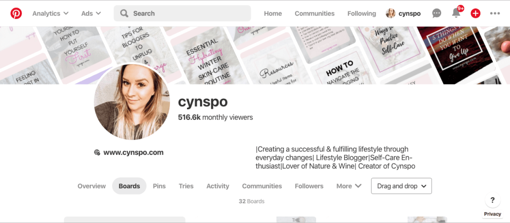screenshot of pinterest account. cynspo.