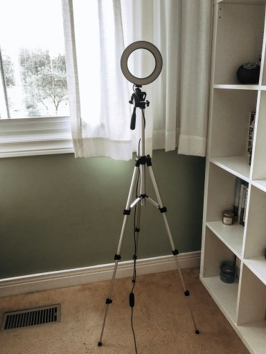 selfie ring light tripod extendable. 5 Helpful Things I Bought to Kickstart My Blog
