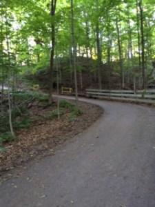 Sixteen Mile Creek - bottom hill