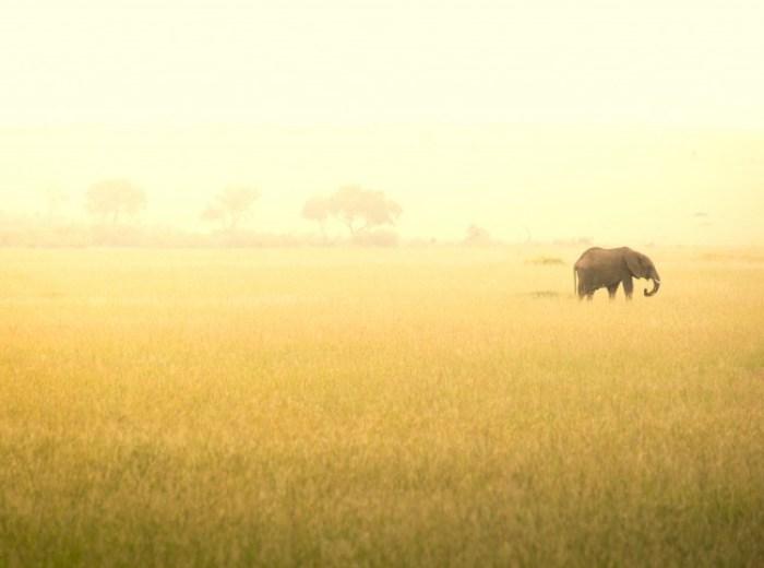20140115-Kenya 2014-016