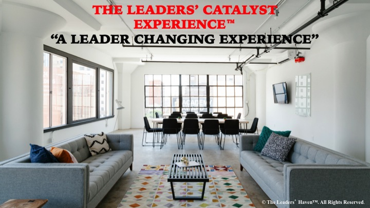The Leaders' Catalyst Experience Cover