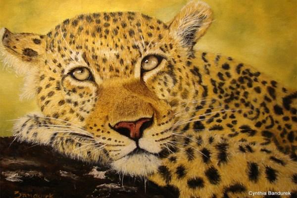 Cynthia Bandurek - Oilpainting. Leopard