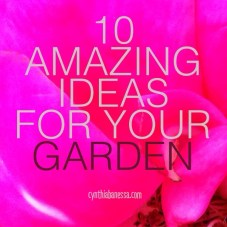 10 amazing ideas for your garden