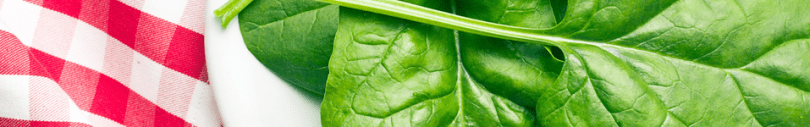 Click here to view a variety of spinach seeds