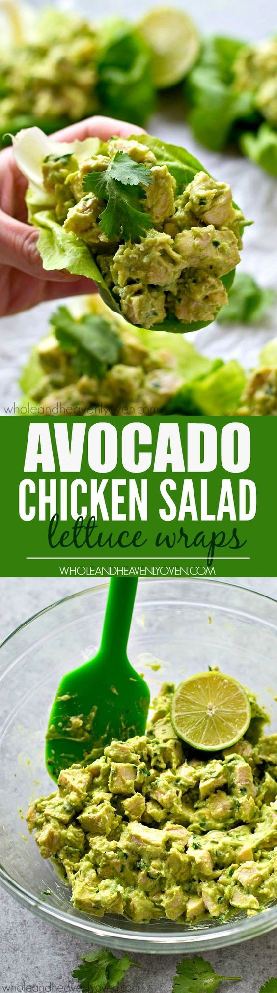 avacado chicken salad