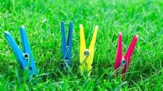 緑の芝生の中にカラフルな洗濯ばさみが並んでいる