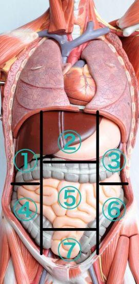 右下腹部の痛みの原因