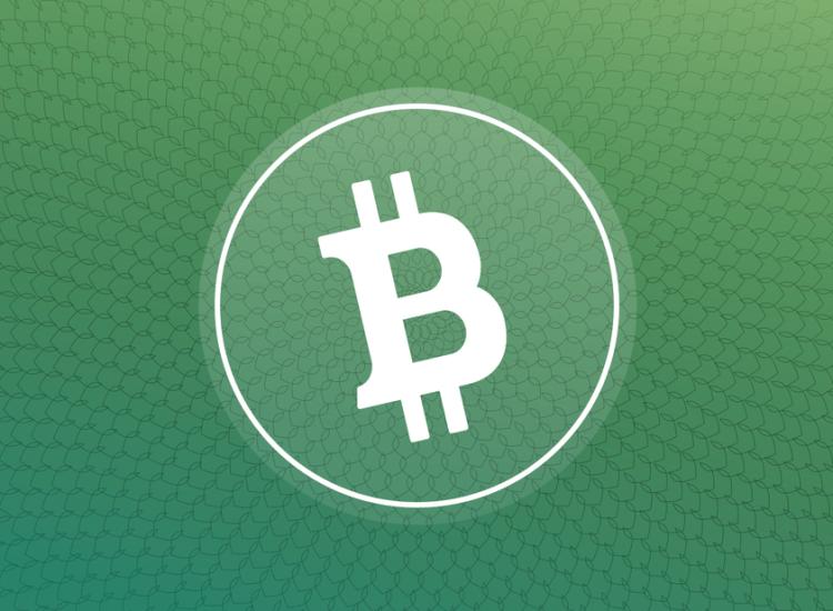 Coinbase abre nuevamente operaciones con Bitcoin Cash (BCH)