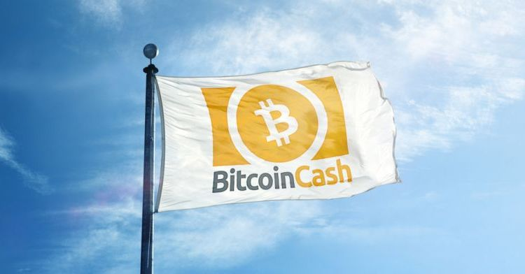 Bitcoin ABC anuncia pre-actualización para Hard Fork de mayo (Integración de Firmas Schnorr)