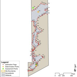 Wetland delineation map