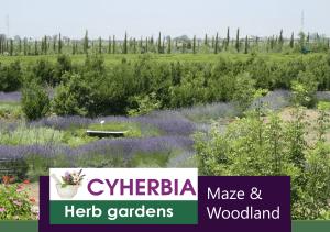Cyherbia Herb Gardens and Maze