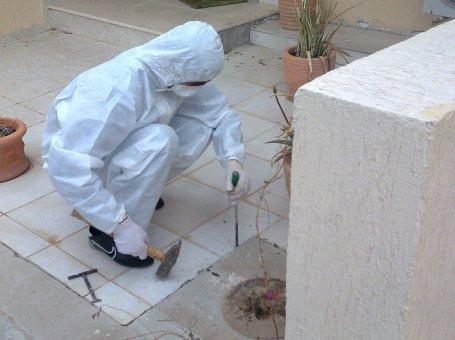 Exterminator Pest Control Paphos