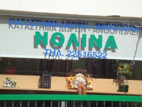 Nolina Flower Shop