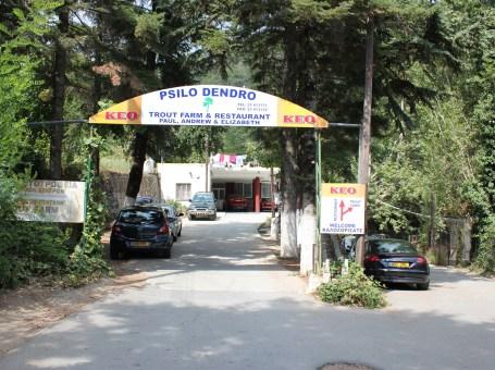 Psilo Dendro Trout Farm & Restaurant