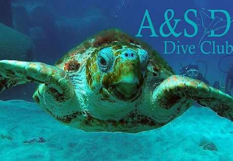 A & S Day Dive Club