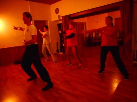 Now Modern Tai Chi & White Crane Kung Fu with Master Knut Nau