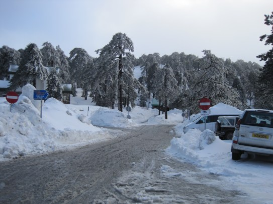 8 Feb 2012 - Troodos mountains, Cyprus (17)
