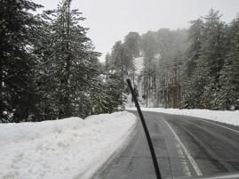 8 Feb 2012 - Troodos mountains, Cyprus (24)