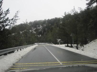 8 Feb 2012 - Troodos mountains, Cyprus (28)