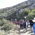 Orchid Walk 2012 1