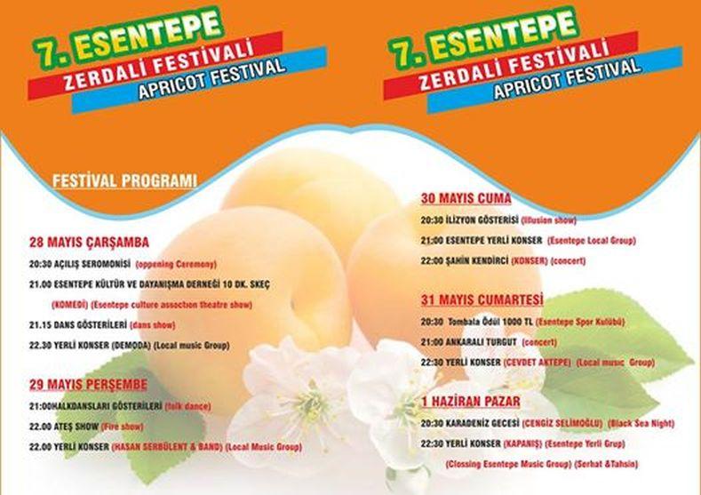 apricot festival program