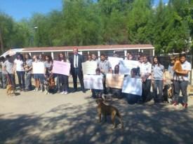 2013 World animal day in Nicosia