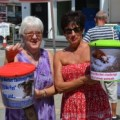 Collecting donations for Hope 4 Pets North Cyprus
