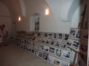 Many lovely photographs