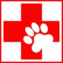 Animal First aid
