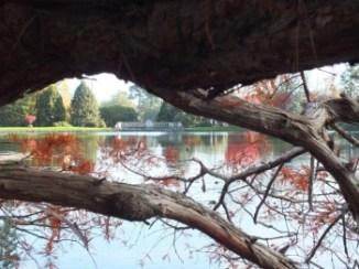 Photos of Sheffield Park Gardens, East Sussex