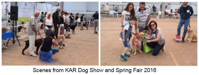 KAR Dog Show and Spring Fair 2016 picture 3