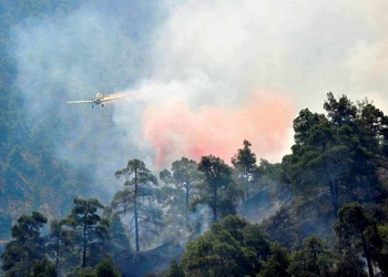 A firefighting plane drops water onto a forest fire at the foothills of Troodos mountain region in Cyprus June 21, 2016. REUTERS/Stringer