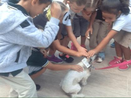The children meet Annie the dog