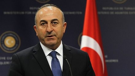 cavusoglu-turkey-with-tc-people