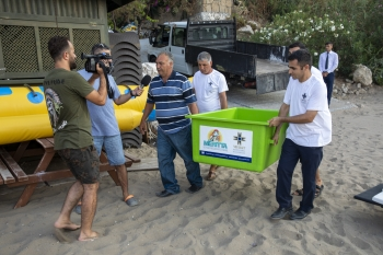 Meritta Sea Turtle released back into the sea (1)