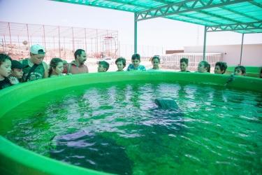 Rescue and rehabilitation centre