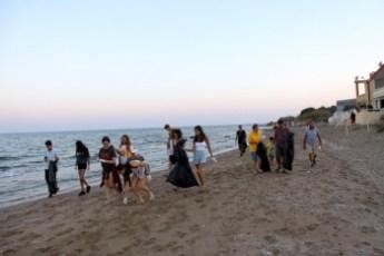 clean a local beach 1