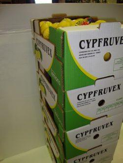 Cypruvex (3)
