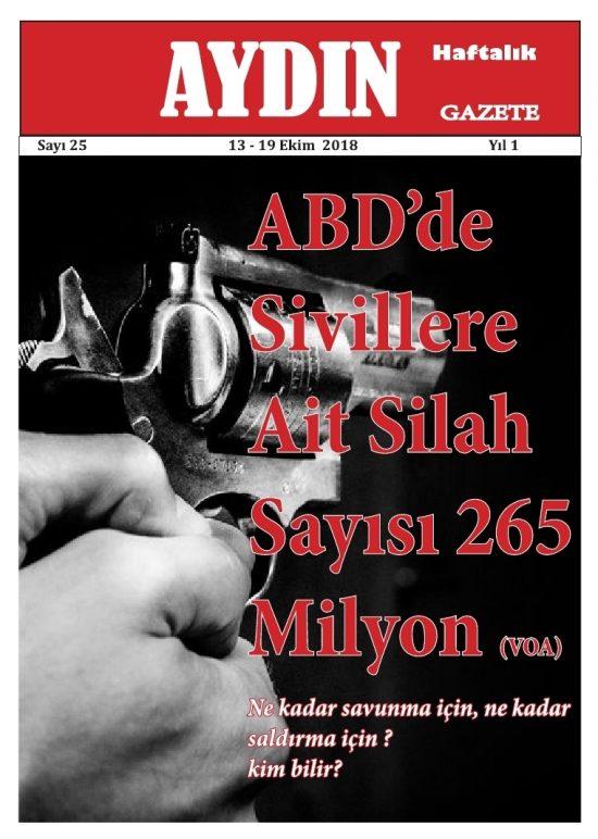 AYDIN 25-1.pdf_page_1