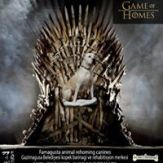 Game of Homes (5)