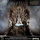 Game of Homes (6)