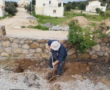 Diane Loftus gardening fun (2) sml
