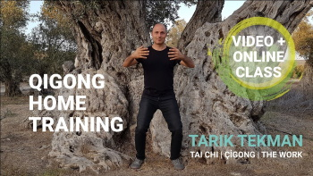 Qigong Home Training 350