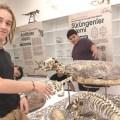 Cyprus Herbarium and Natural History Museum