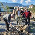 Girne tree planting (1)